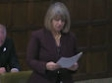 Speaking in Westminster Hall, 25 Jan 2017